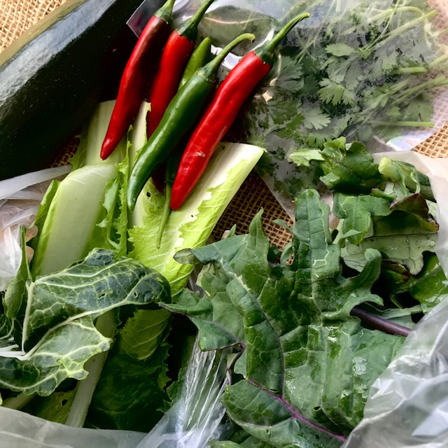 Image of kale, asian cabbage, zucchini, and peppers